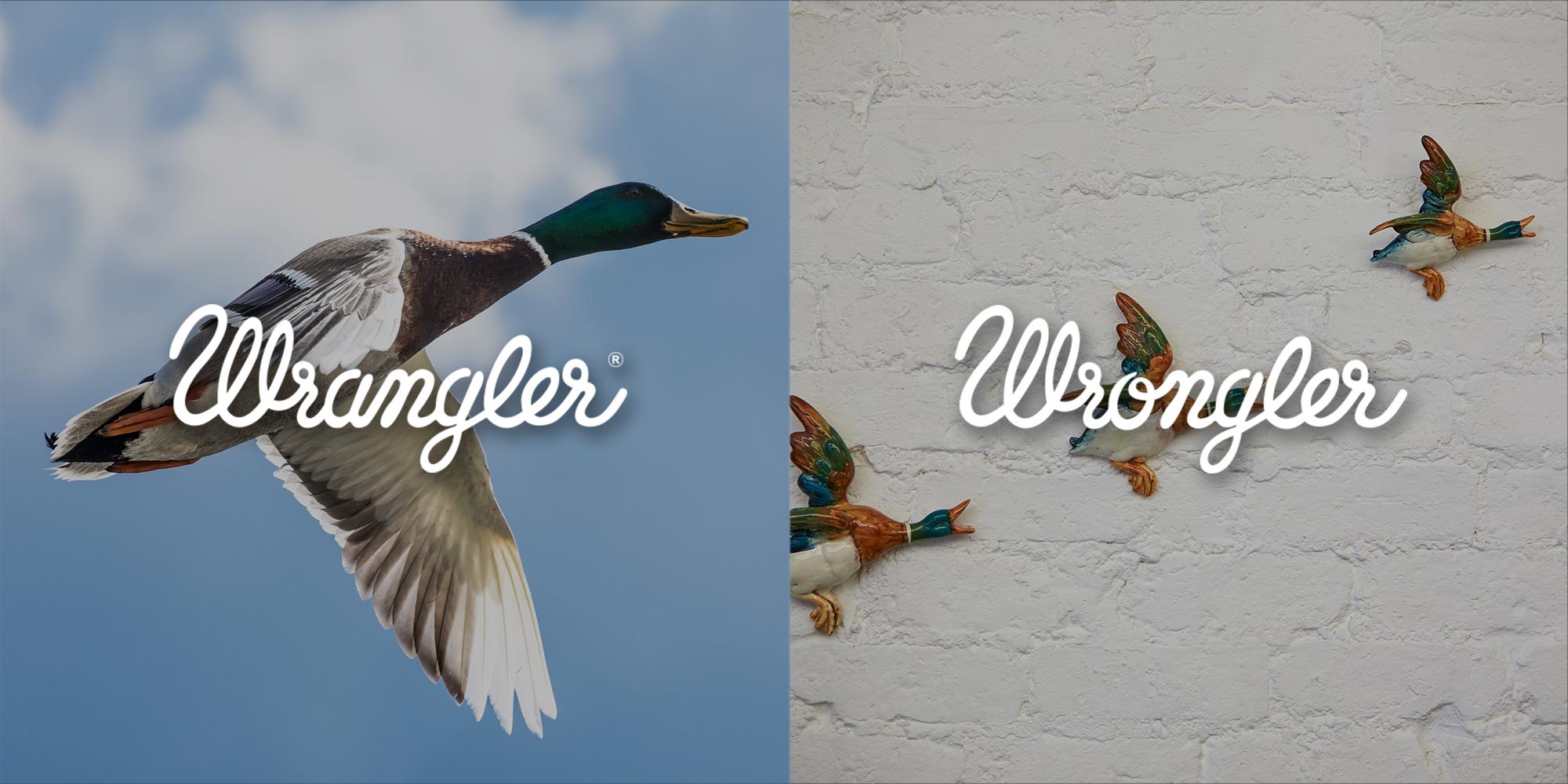 WRANGLER_WRONGLER__0011_3